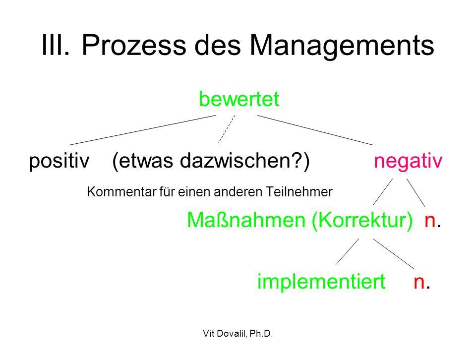 III. Prozess des Managements