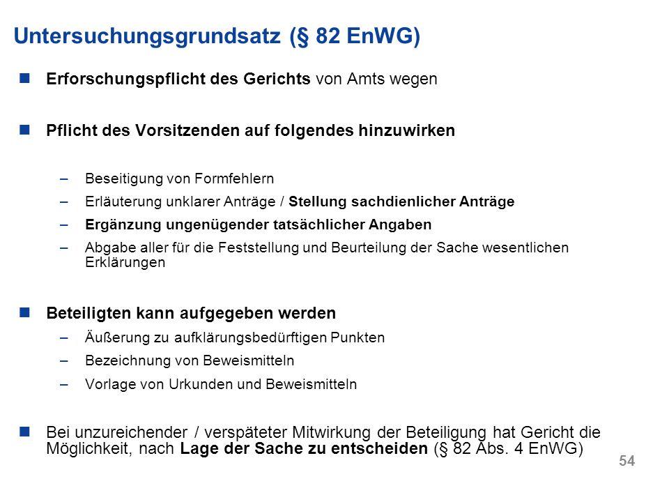 Untersuchungsgrundsatz (§ 82 EnWG)