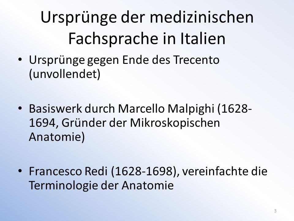 Ursprünge der medizinischen Fachsprache in Italien