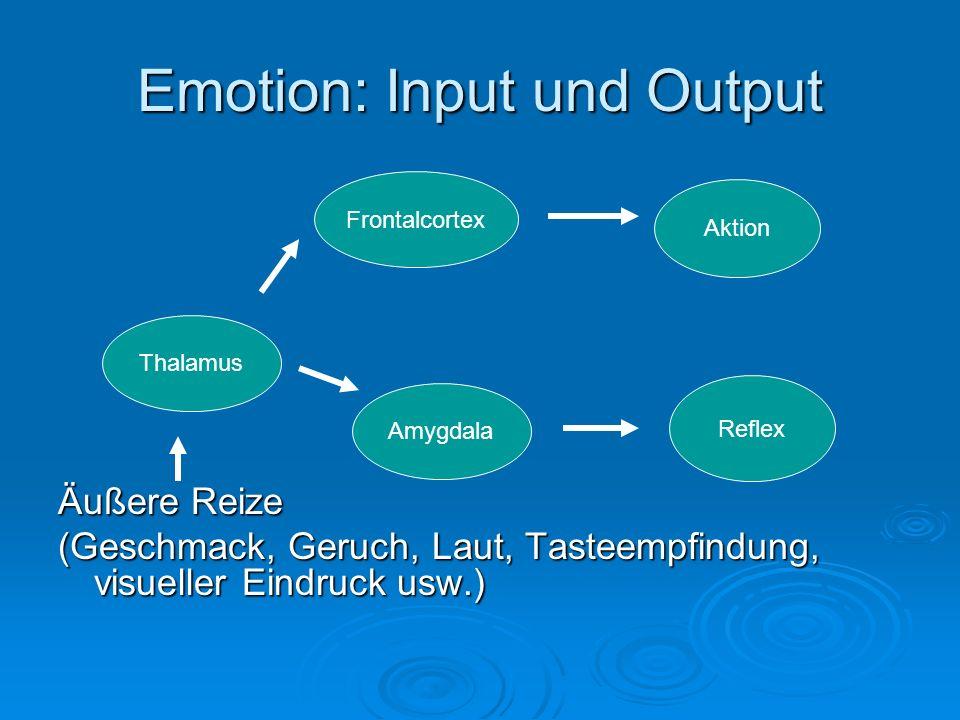 Emotion: Input und Output