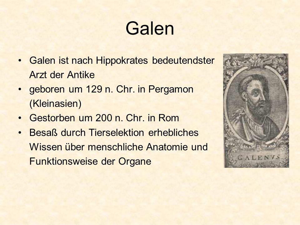 Galen Galen ist nach Hippokrates bedeutendster Arzt der Antike