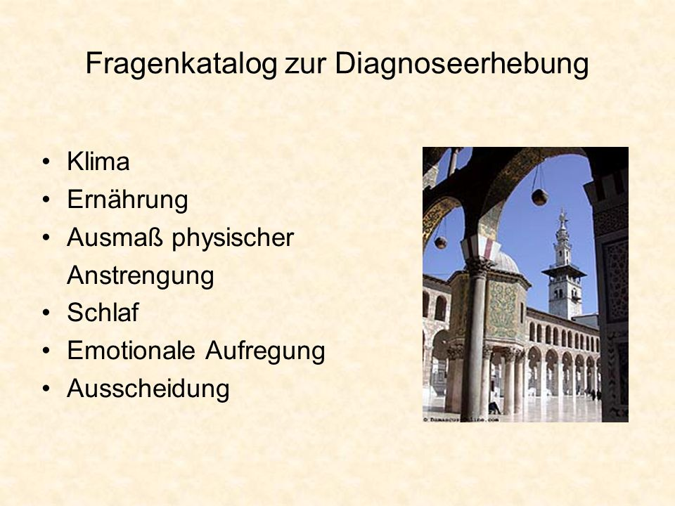 Fragenkatalog zur Diagnoseerhebung