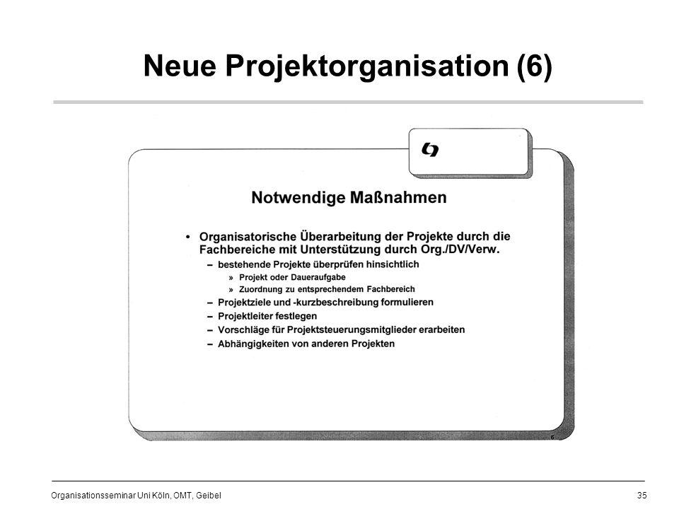 Neue Projektorganisation (6)