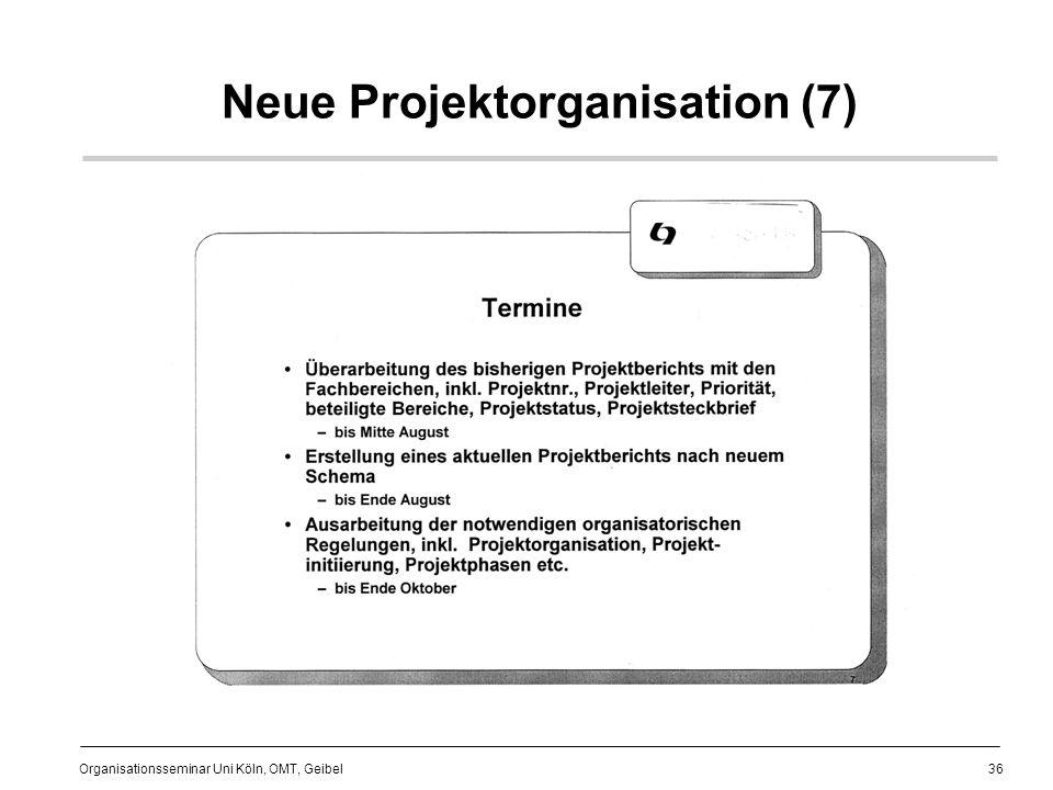 Neue Projektorganisation (7)
