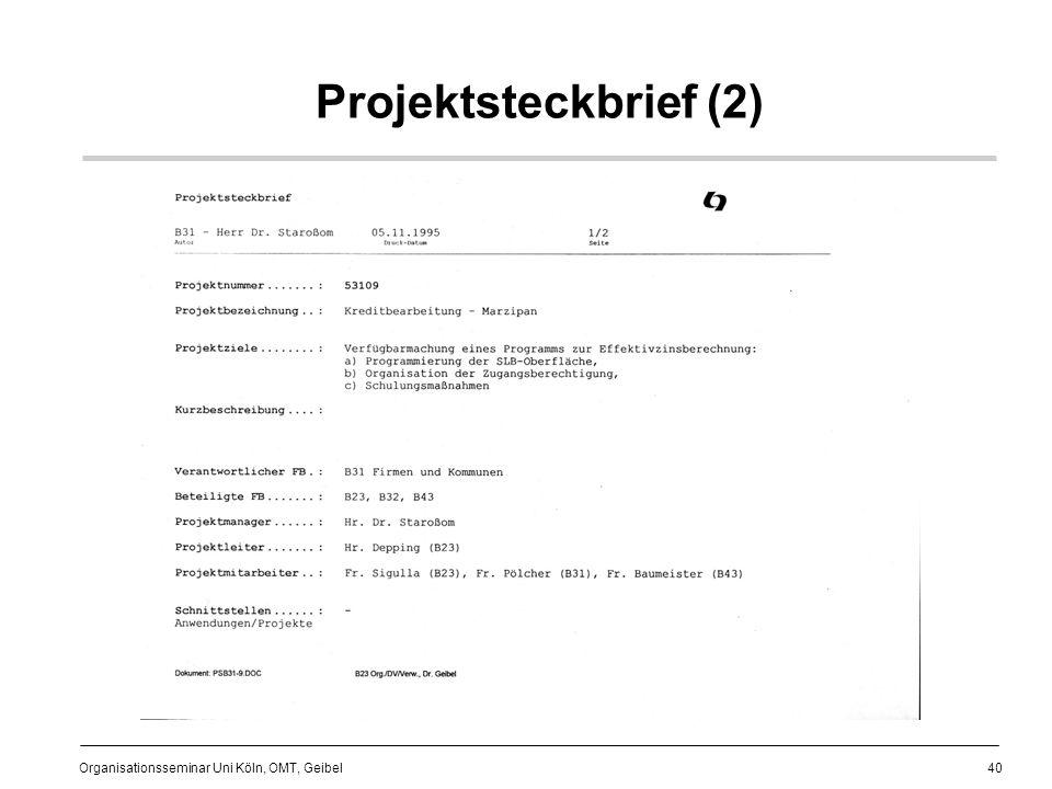 Projektsteckbrief (2)