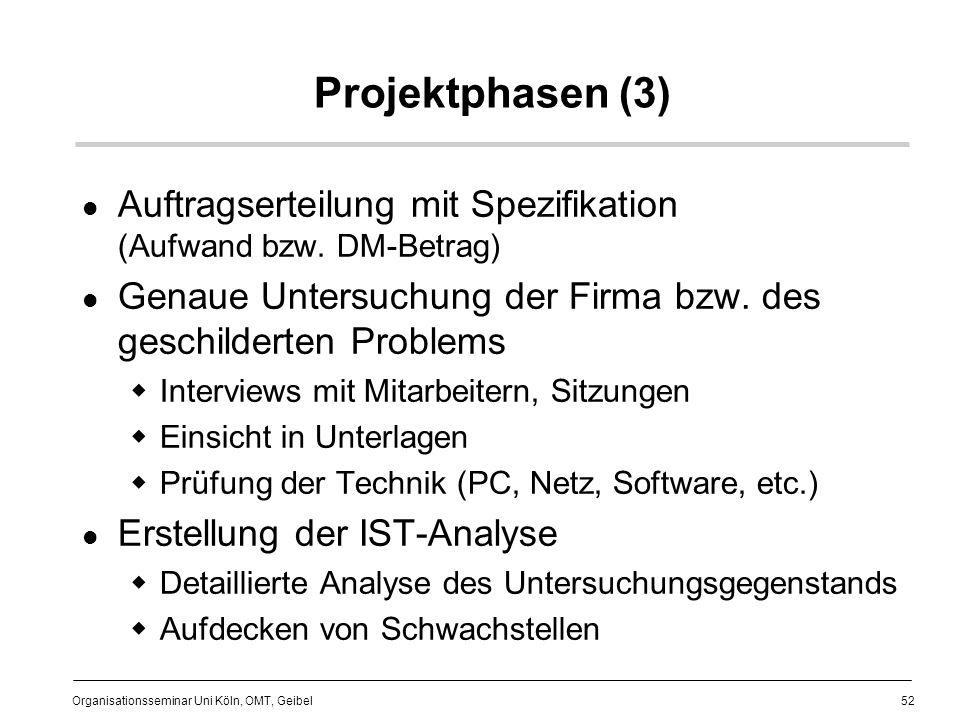 Projektphasen (3) Auftragserteilung mit Spezifikation (Aufwand bzw. DM-Betrag) Genaue Untersuchung der Firma bzw. des geschilderten Problems.