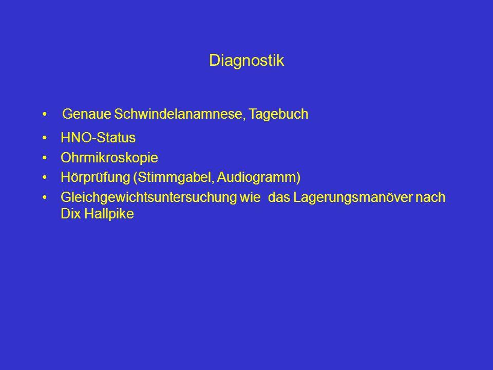 Diagnostik Genaue Schwindelanamnese, Tagebuch HNO-Status