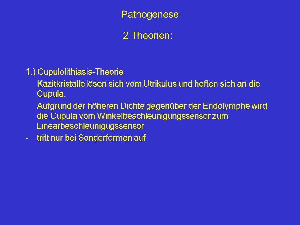 Pathogenese 2 Theorien: 1.) Cupulolithiasis-Theorie