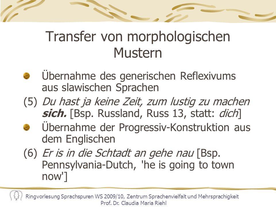 Transfer von morphologischen Mustern