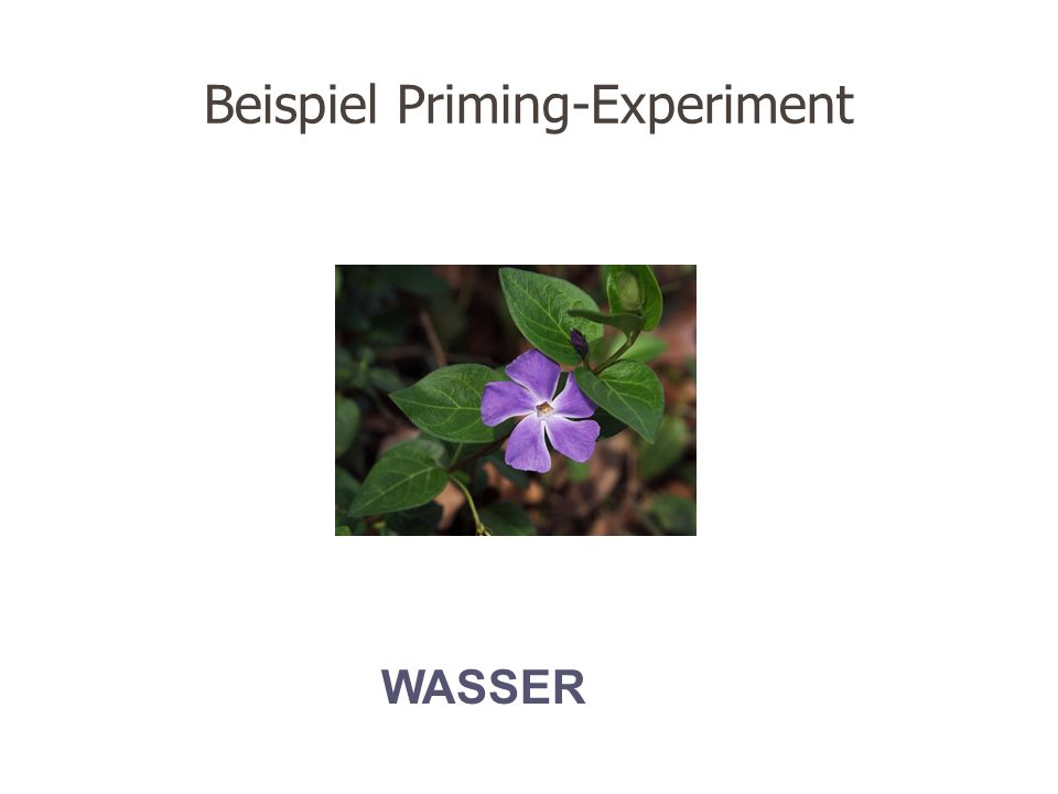 Beispiel Priming-Experiment