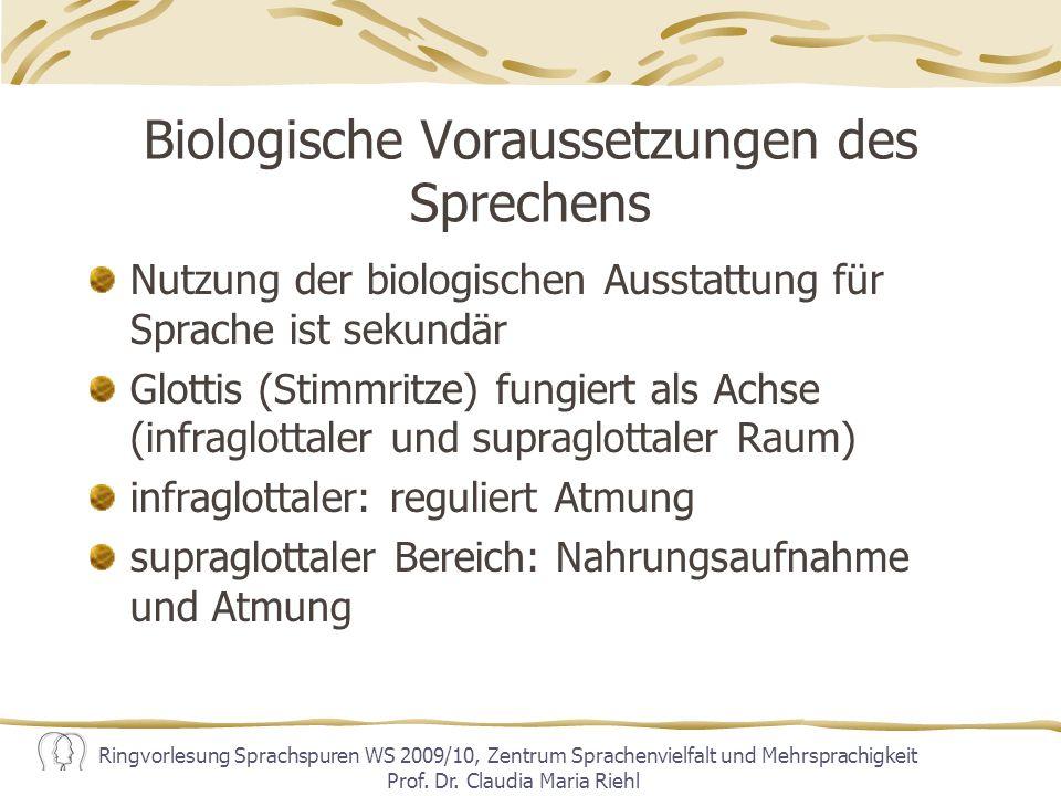 Biologische Voraussetzungen des Sprechens