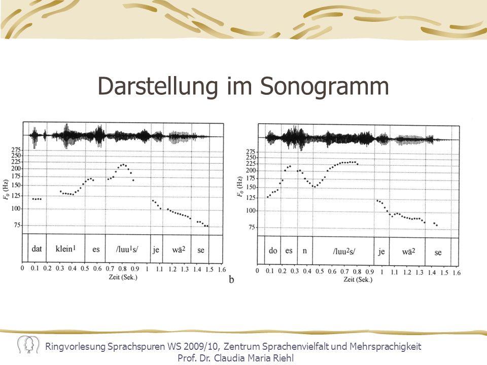 Darstellung im Sonogramm