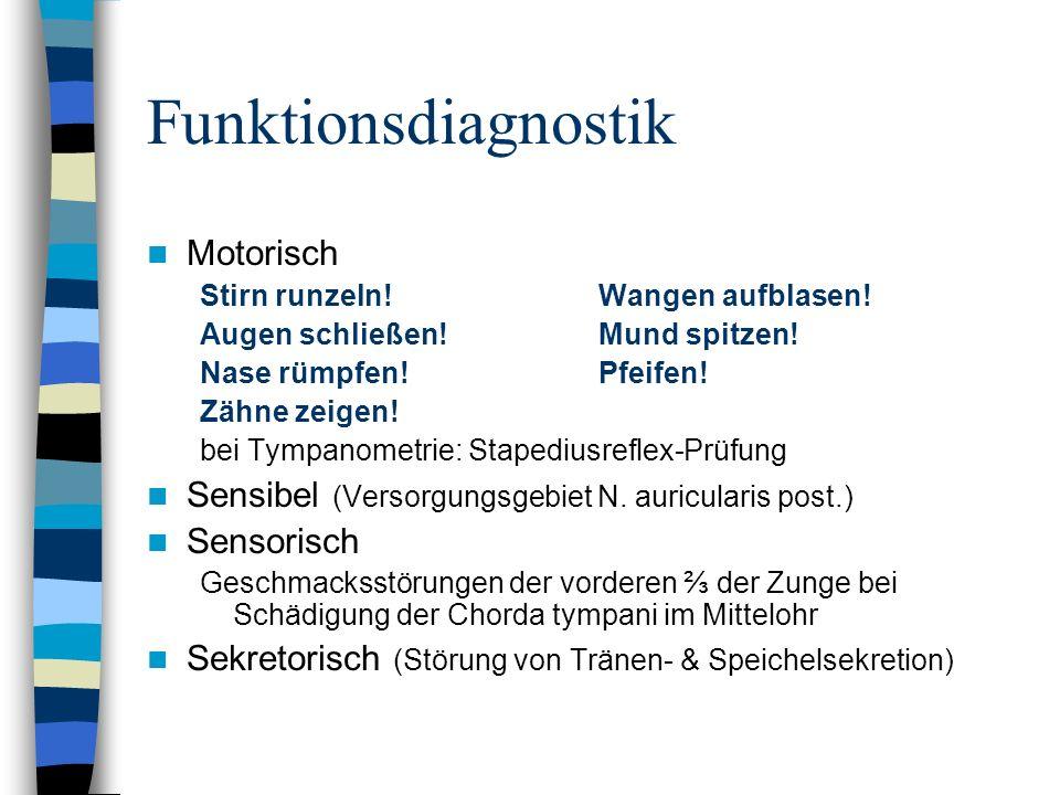 Funktionsdiagnostik Motorisch