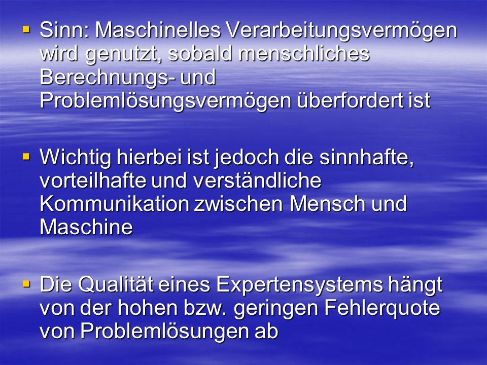 Sinn: Maschinelles Verarbeitungsvermögen wird genutzt, sobald menschliches Berechnungs- und Problemlösungsvermögen überfordert ist