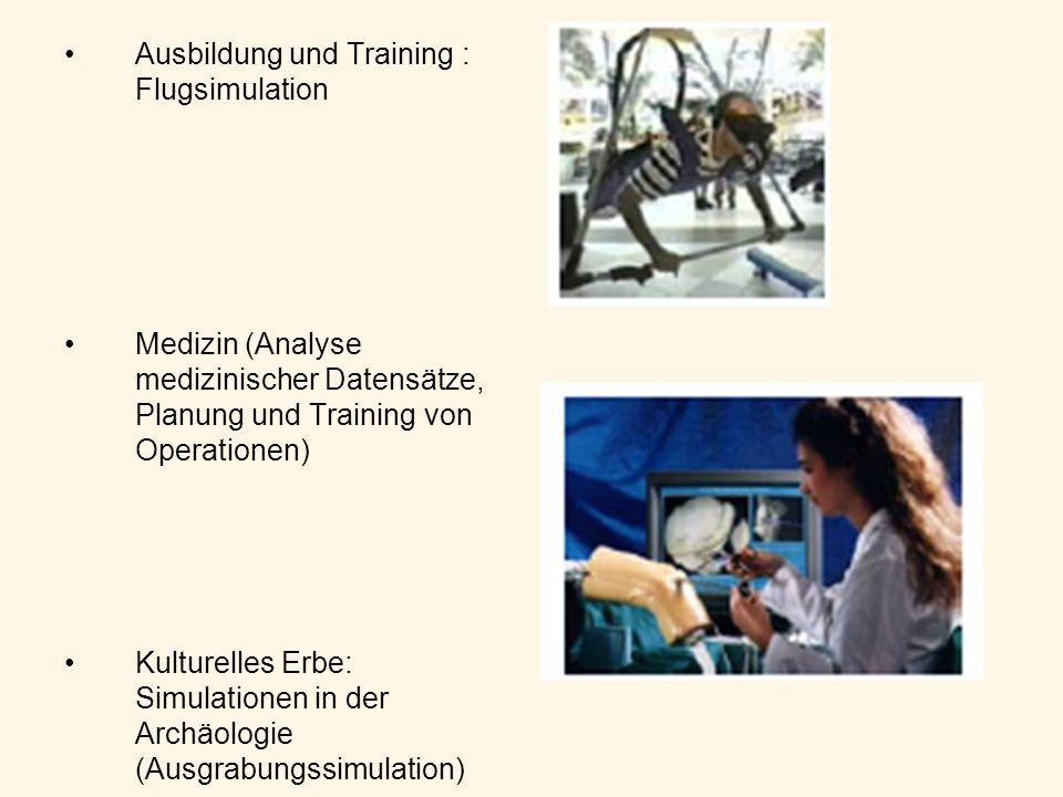 Ausbildung und Training : Flugsimulation