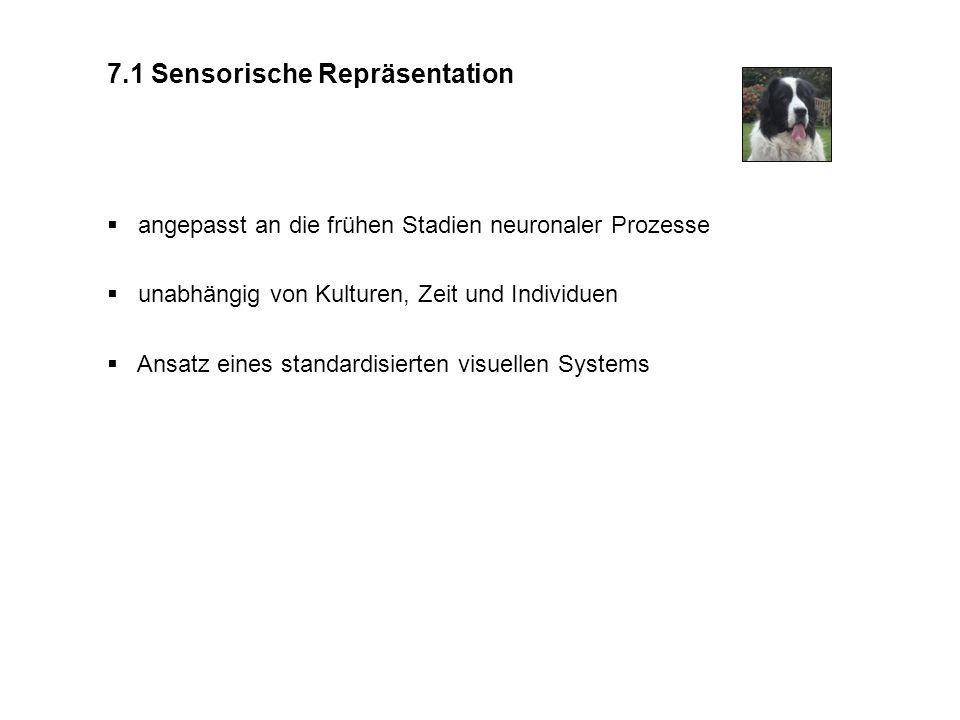 7.1 Sensorische Repräsentation