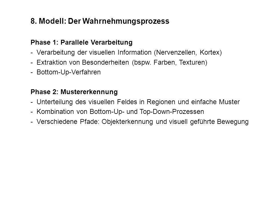 8. Modell: Der Wahrnehmungsprozess
