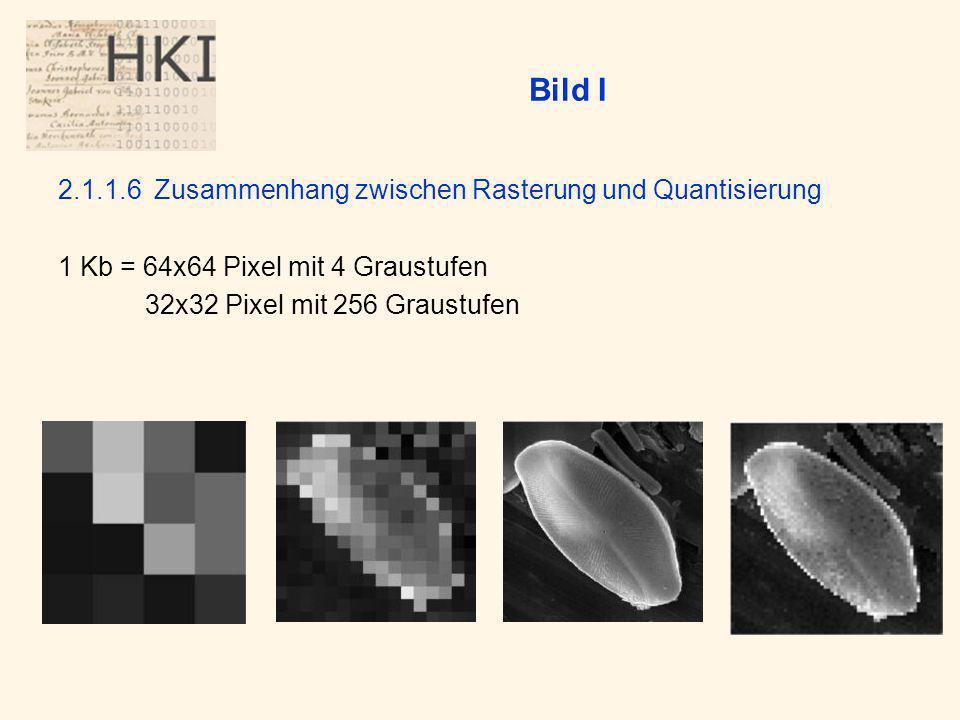 Bild I 2.1.1.6 Zusammenhang zwischen Rasterung und Quantisierung
