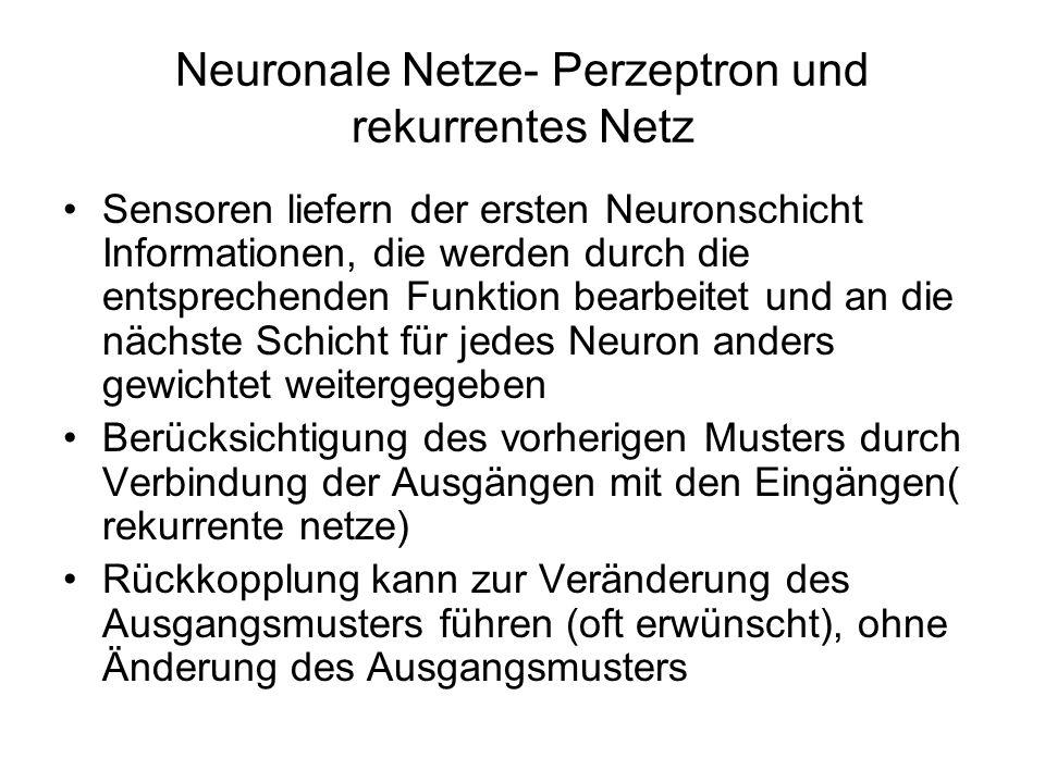 Neuronale Netze- Perzeptron und rekurrentes Netz