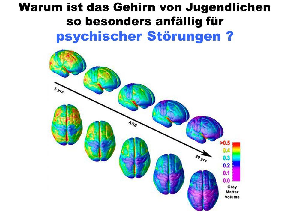 Warum ist das Gehirn von Jugendlichen so besonders anfällig für psychischer Störungen