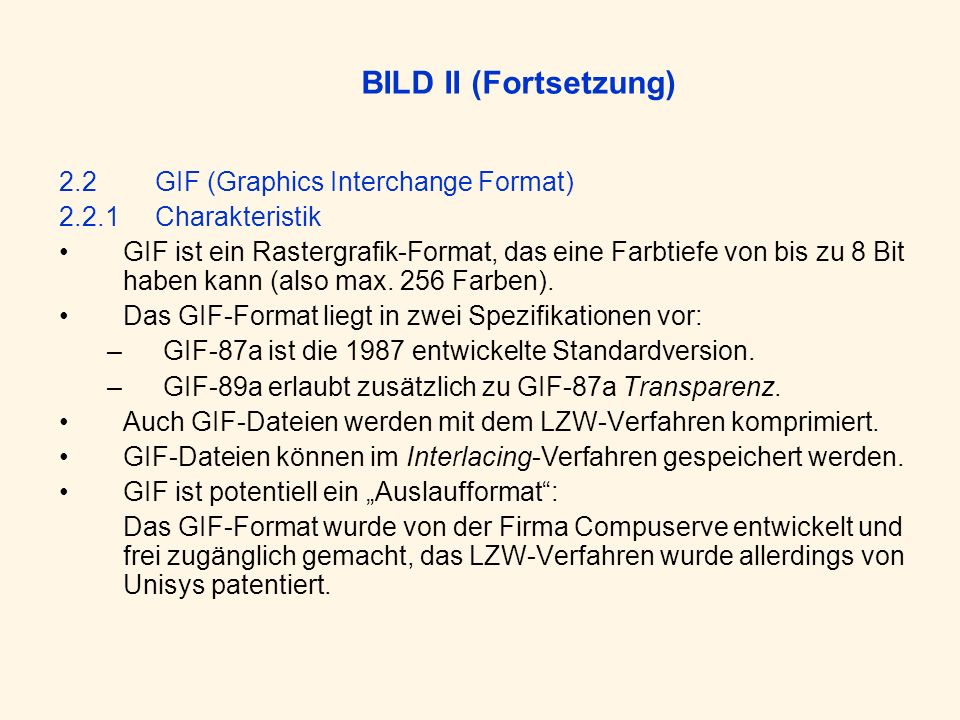 BILD II (Fortsetzung) 2.2 GIF (Graphics Interchange Format)