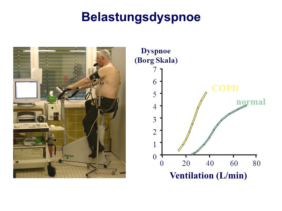 Belastungsdyspnoe COPD normal Ventilation (L/min) 20 40 60 80 1 2 3 4