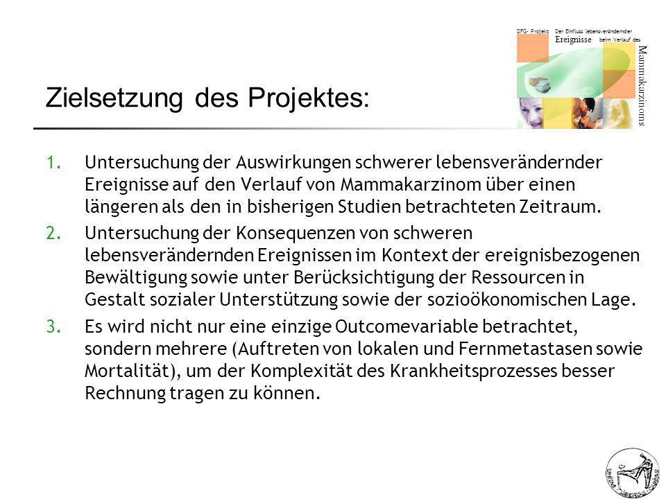 Zielsetzung des Projektes: