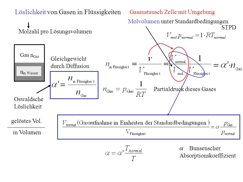 Löslichkeit von Gasen in Flüssigkeiten