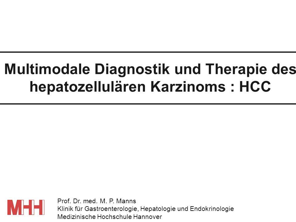 Multimodale Diagnostik und Therapie des hepatozellulären Karzinoms : HCC