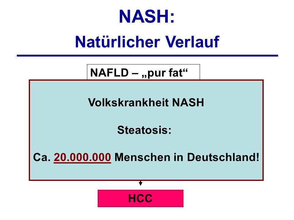 Volkskrankheit NASH Steatosis: Ca. 20.000.000 Menschen in Deutschland!