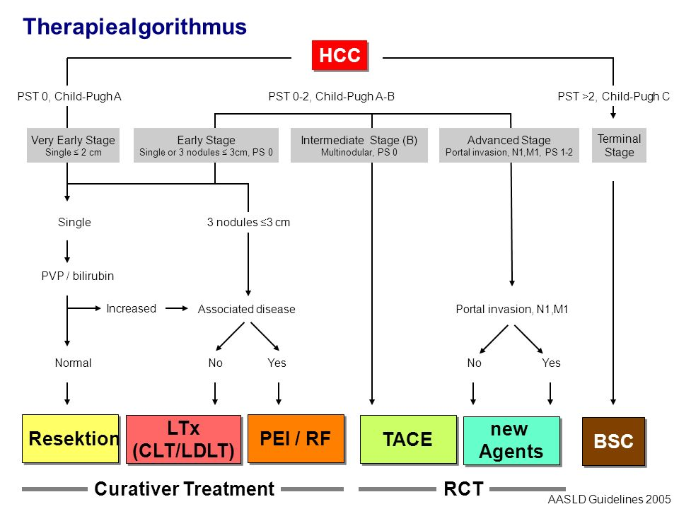 Therapiealgorithmus HCC Resektion LTx (CLT/LDLT) PEI / RF TACE new