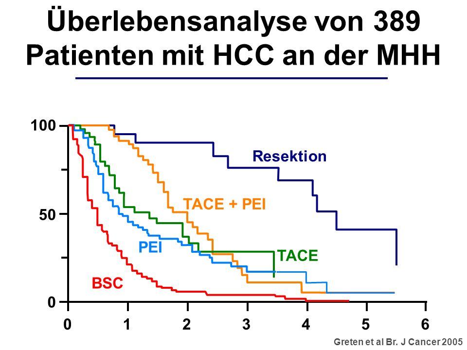 Überlebensanalyse von 389 Patienten mit HCC an der MHH