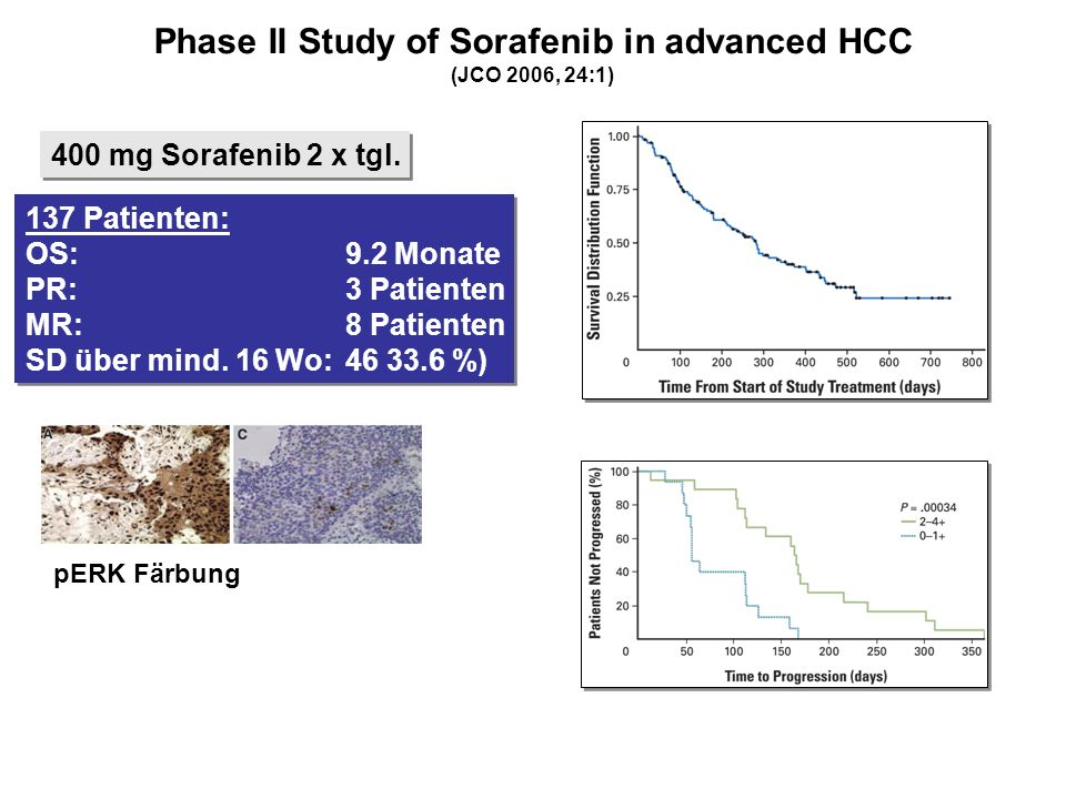 Phase II Study of Sorafenib in advanced HCC
