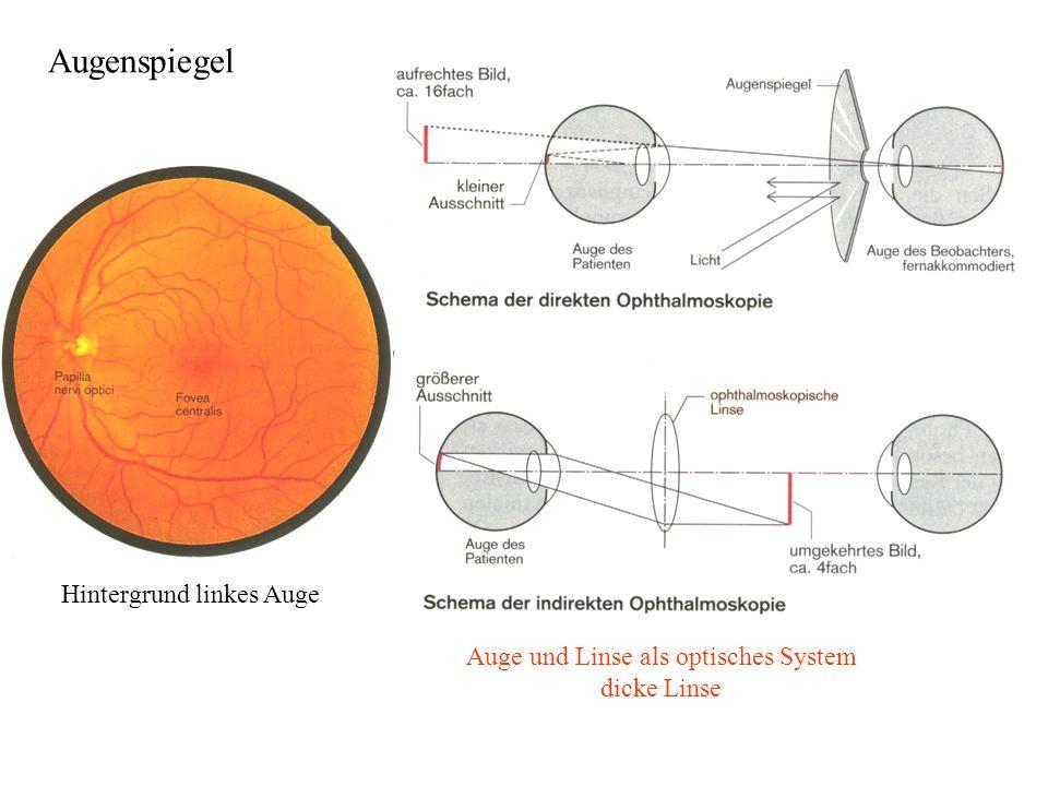 Auge und Linse als optisches System