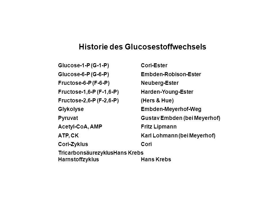 Historie des Glucosestoffwechsels