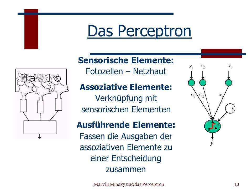 Sensorische Elemente: Assoziative Elemente: Ausführende Elemente: