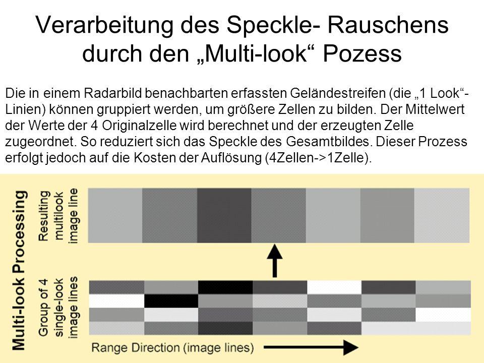 """Verarbeitung des Speckle- Rauschens durch den """"Multi-look Pozess"""