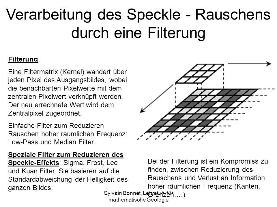 Verarbeitung des Speckle - Rauschens durch eine Filterung