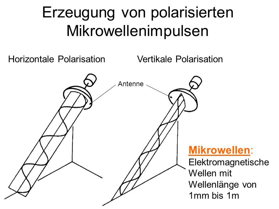 Erzeugung von polarisierten Mikrowellenimpulsen