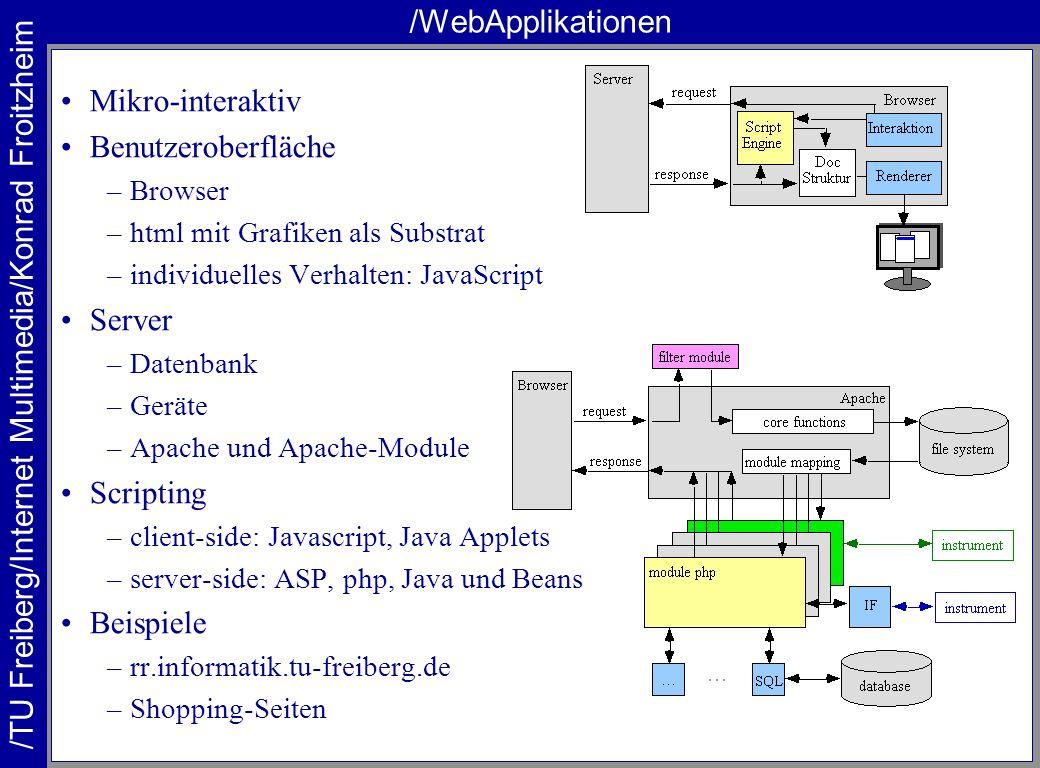 /WebApplikationen Mikro-interaktiv Benutzeroberfläche Server Scripting