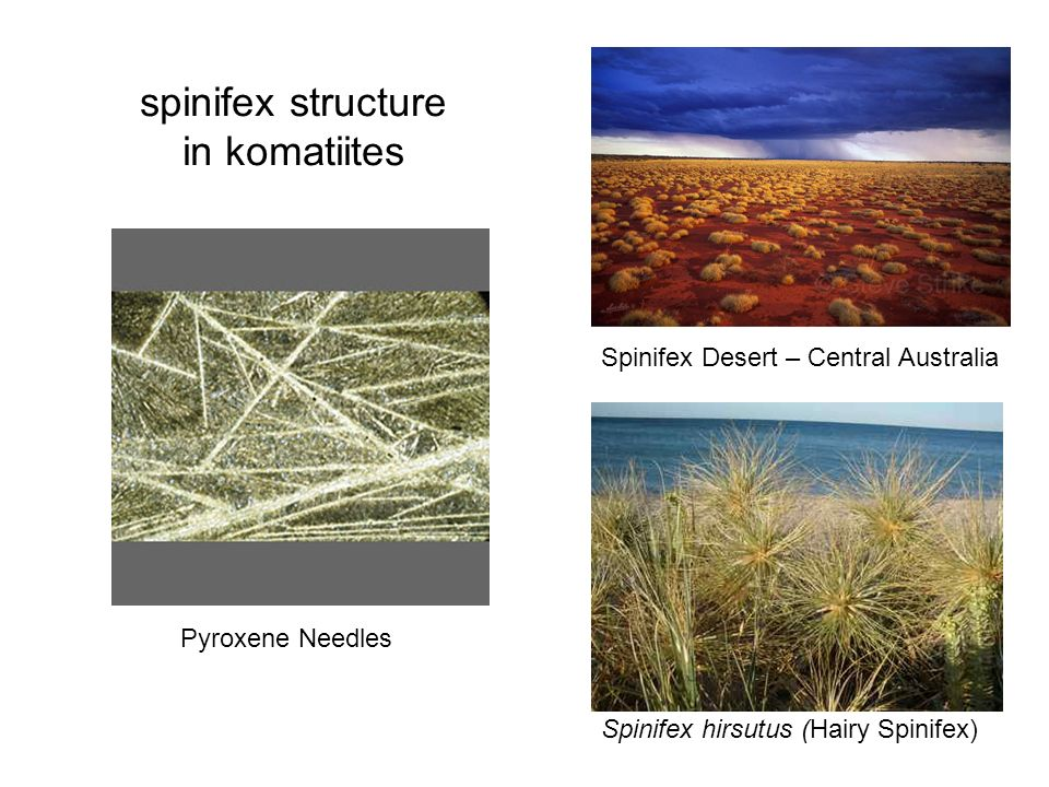 Spinifex Desert – Central Australia