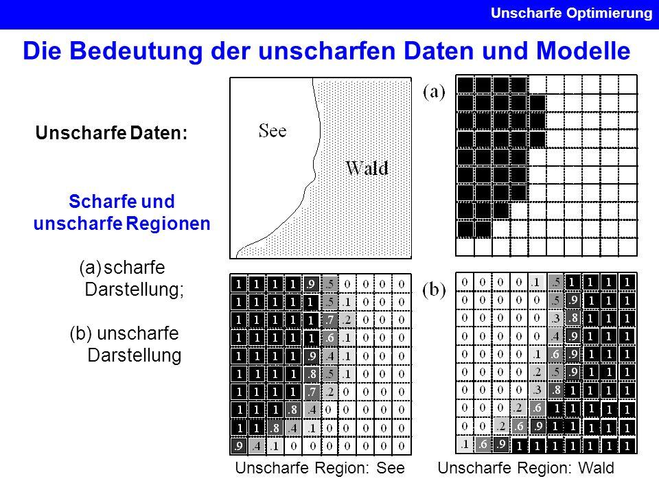 Die Bedeutung der unscharfen Daten und Modelle