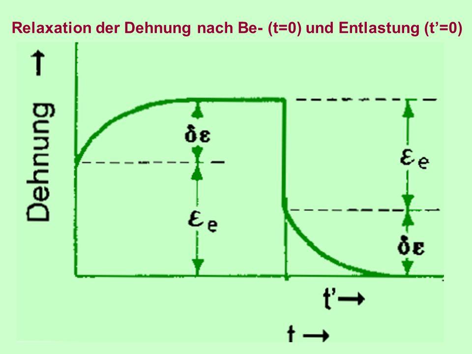 Relaxation der Dehnung nach Be- (t=0) und Entlastung (t'=0)