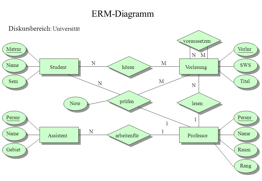 ERM-Diagramm Diskursbereich: Universität voraussetzen Matrnr Vorlnr N