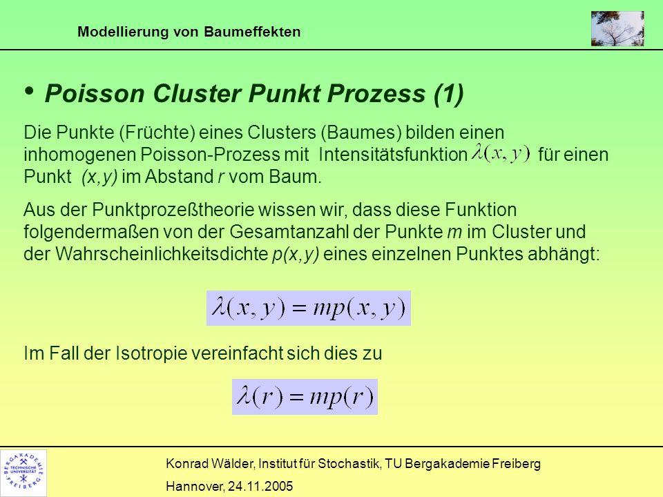 Poisson Cluster Punkt Prozess (1)