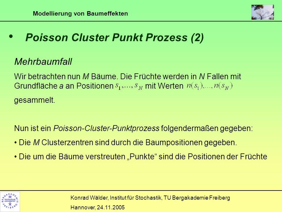 Poisson Cluster Punkt Prozess (2)