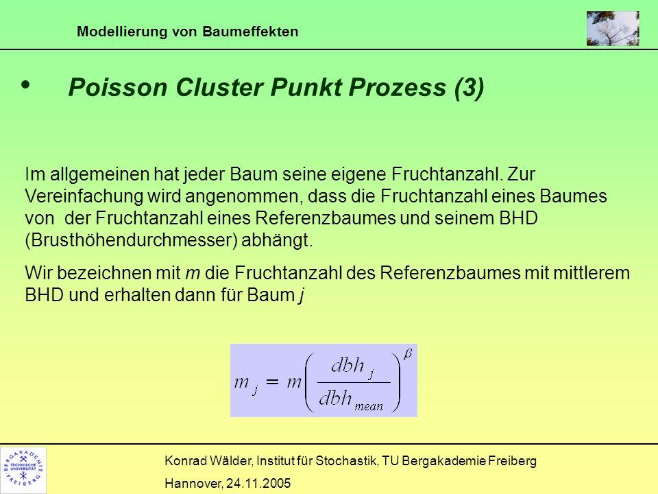 Poisson Cluster Punkt Prozess (3)