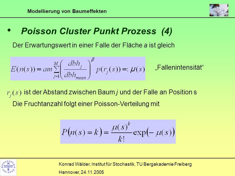 Poisson Cluster Punkt Prozess (4)