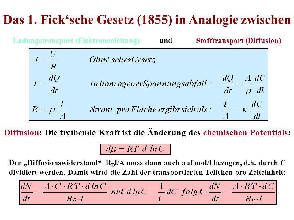 Das 1. Fick'sche Gesetz (1855) in Analogie zwischen