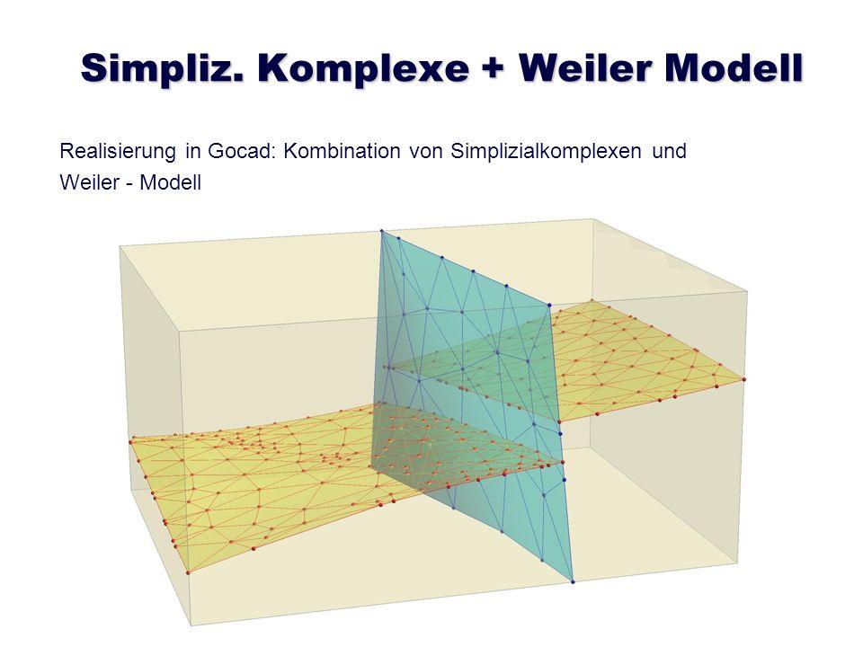 Simpliz. Komplexe + Weiler Modell